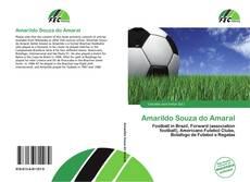 Couverture de Amarildo Souza do Amaral