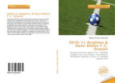 Bookcover of 2010–11 Brighton & Hove Albion F.C. Season
