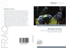 Bookcover of Michigan Panthers