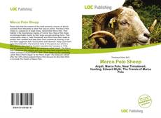 Copertina di Marco Polo Sheep