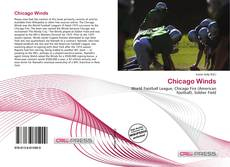 Bookcover of Chicago Winds