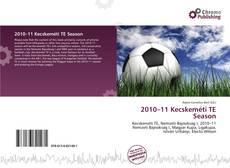 2010–11 Kecskeméti TE Season kitap kapağı
