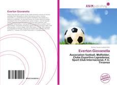 Capa do livro de Everton Giovanella