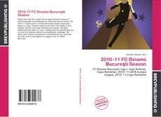 Bookcover of 2010–11 FC Dinamo Bucureşti Season