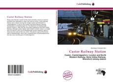 Bookcover of Castor Railway Station