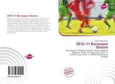 2010–11 Bursaspor Season的封面
