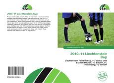 Обложка 2010–11 Liechtenstein Cup