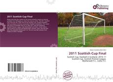 Bookcover of 2011 Scottish Cup Final