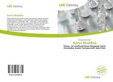 Karel Skalička kitap kapağı