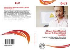 Bookcover of Mount Sinai Medical Center & Miami Heart Institute