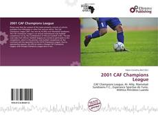 Bookcover of 2001 CAF Champions League