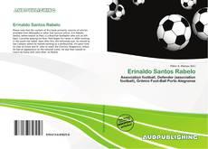 Capa do livro de Erinaldo Santos Rabelo
