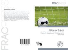 Portada del libro de Aleksandar Trišović