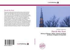 Buchcover von David the Scot
