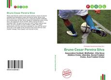 Bookcover of Bruno Cesar Pereira Silva