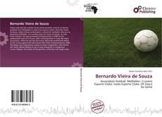Capa do livro de Bernardo Vieira de Souza
