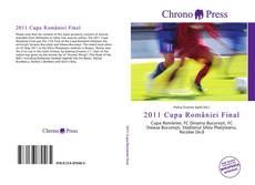 Bookcover of 2011 Cupa României Final