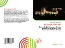 Antipope John VIII kitap kapağı