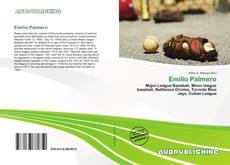 Bookcover of Emilio Palmero