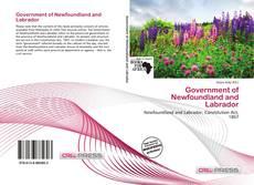 Bookcover of Government of Newfoundland and Labrador