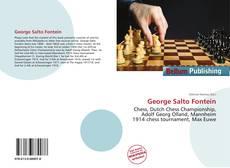 Borítókép a  George Salto Fontein - hoz