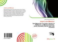 Portada del libro de Juan Luis Manzur
