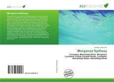 Bookcover of Morganza Spillway