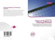 Bookcover of Clube de Regatas do Flamengo Coaches