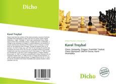 Karel Treybal kitap kapağı
