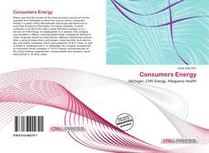 Bookcover of Consumers Energy