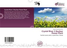 Bookcover of Crystal River 3 Nuclear Power Plant