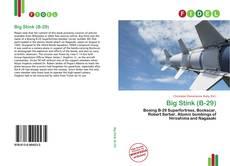Bookcover of Big Stink (B-29)