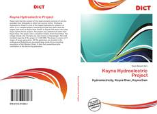 Bookcover of Koyna Hydroelectric Project