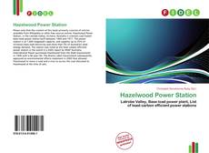Bookcover of Hazelwood Power Station