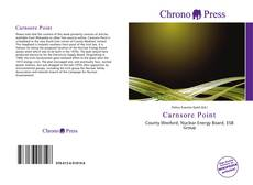 Bookcover of Carnsore Point