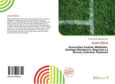 Bookcover of Juan Silva