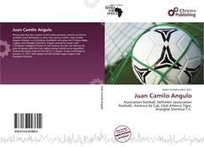 Portada del libro de Juan Camilo Angulo