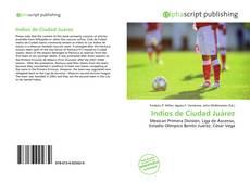 Bookcover of Indios de Ciudad Juárez