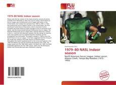 Buchcover von 1979–80 NASL Indoor season