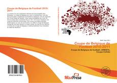Bookcover of Coupe de Belgique de Football 2010-2011