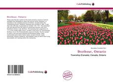 Bookcover of Brethour, Ontario