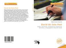Обложка David de Sola Pool