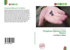 Portada del libro de Chapleau Ojibway First Nation