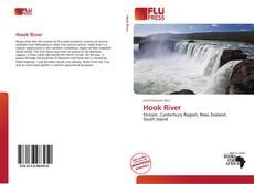 Bookcover of Hook River