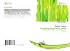 Bookcover of False Hero