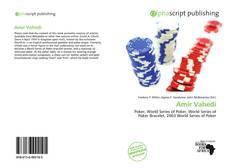 Buchcover von Amir Vahedi