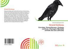 Grand Corbeau kitap kapağı