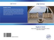 Bookcover of Baglioni Hotel