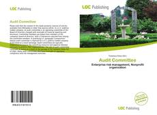 Bookcover of Audit Committee