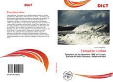 Tempête Lothar kitap kapağı